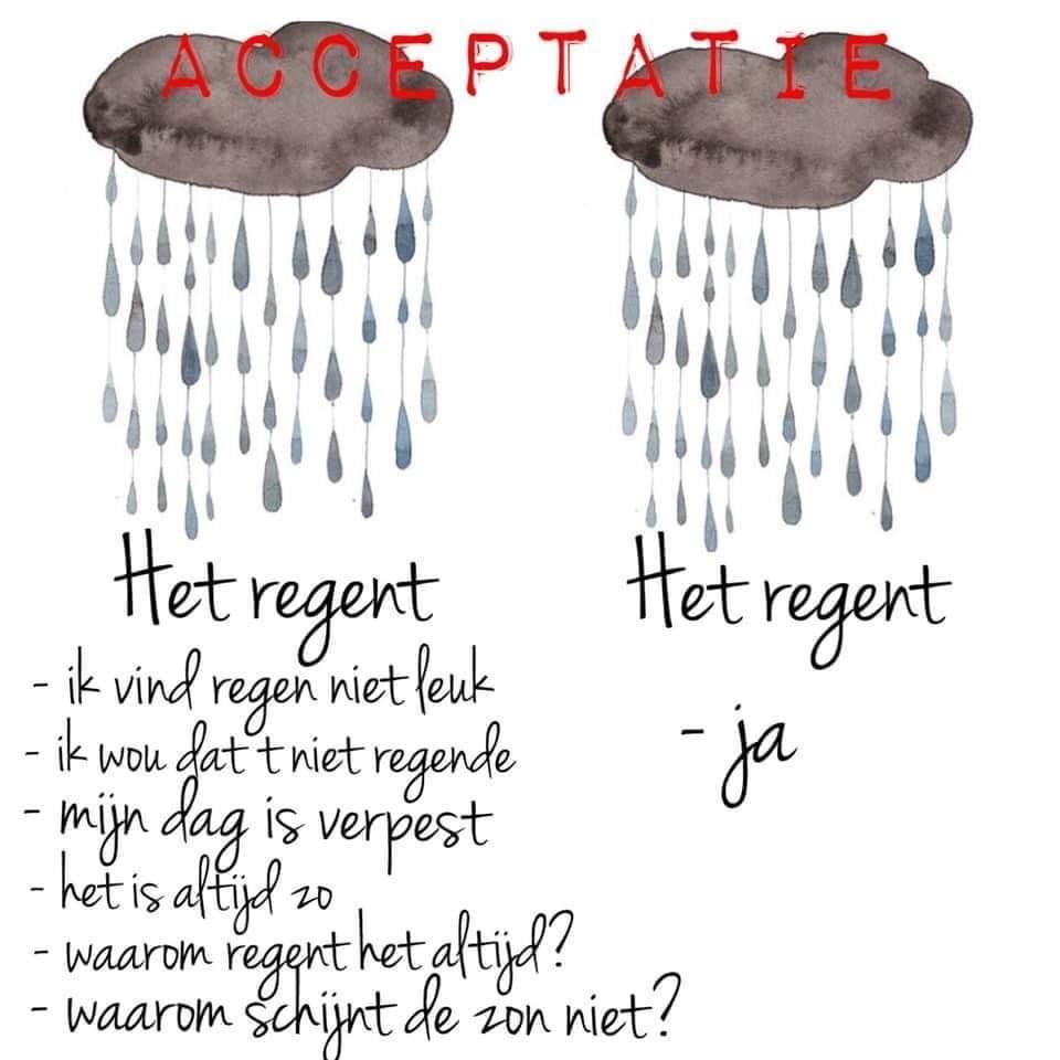 Kan een afbeelding zijn van de tekst 'ACCEPTATIE Het regent -ja Het regent -ik vind regen niet leuk -ik wou dat tniet regende dag is verpest is altijd z0 -waarom regent het altjd? -waarom schijnt de zon niet?'