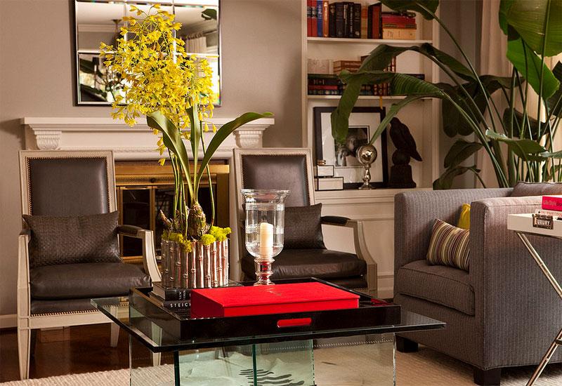 nicolai palm tree decorating houseplants