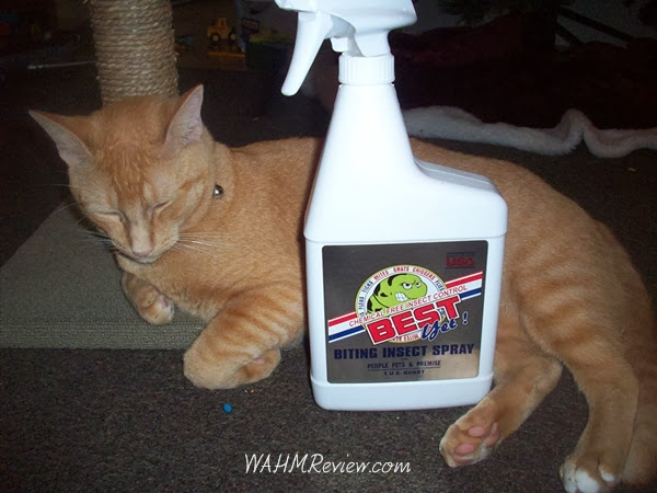I was equally impressed this product could not only be sprayed WHILE our pet is in the home, but, actually sprayed ON the pet if they have fleas.