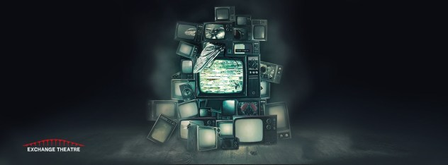 poster tv play the flies