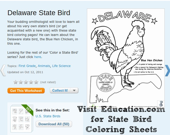 State Bird Coloring Sheets for Children from Education.com
