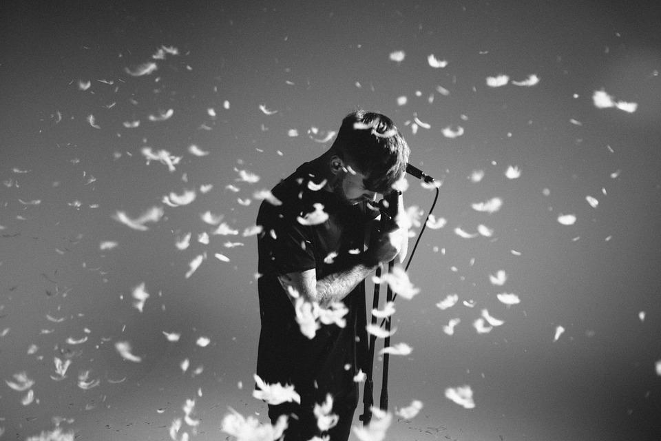 Action, Adult, Confetti, Feathers, Man, Microphone