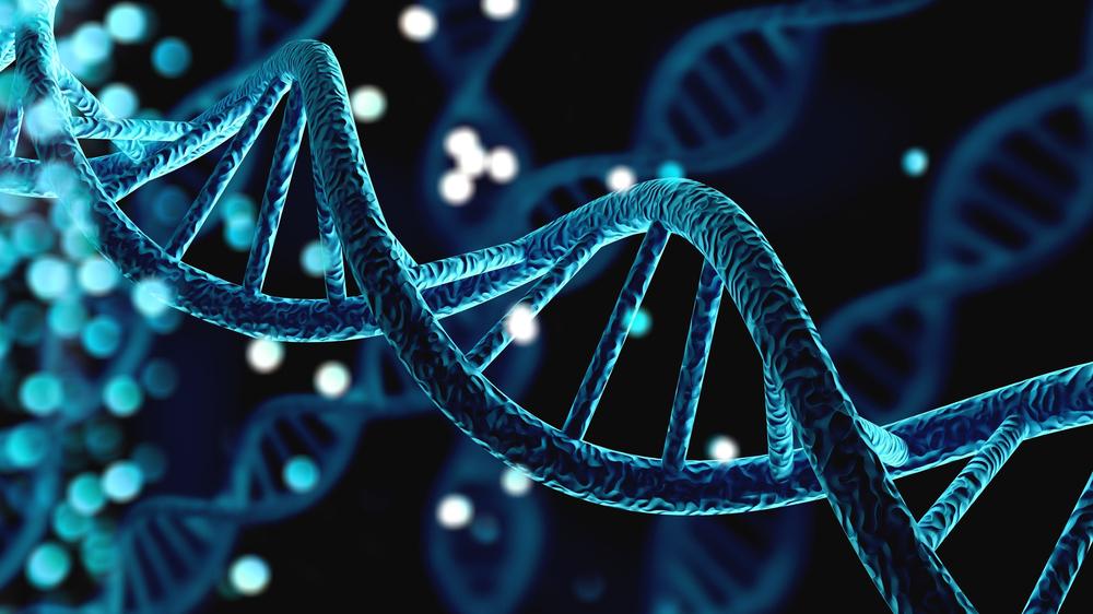 A maior parte do genoma humano é formada por DNA regulador, que ativa ou desativa características hereditárias. (Fonte: Shutterstock/Billion Photos/Reprodução)