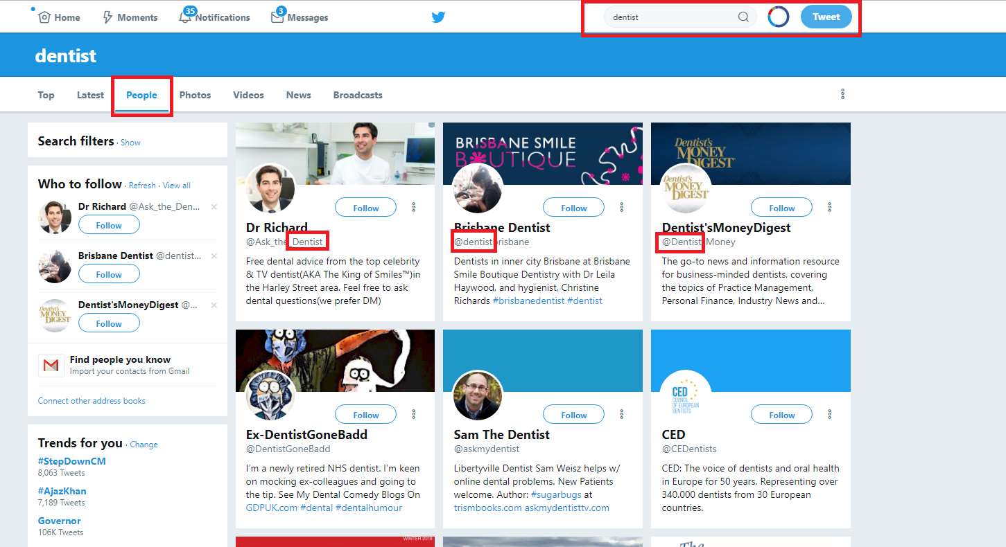 search for keywords in Twitter profiles