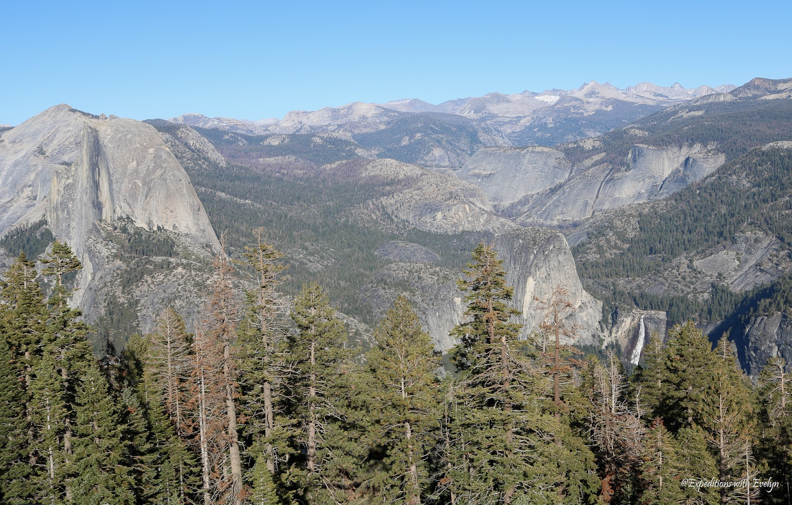 Half Dome, Nevada Fall, and other Yosemite icons command the view behind the pine trees from the top of Sentinel Dome.