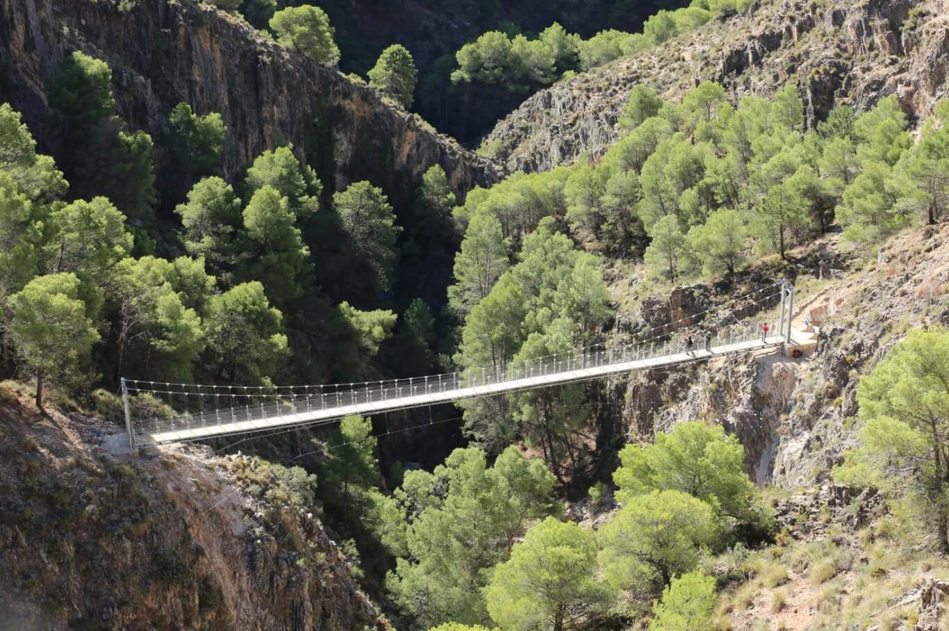 Flipa con este puente colgante ¡A nosotros nos da un poquito de respeto! ¿A ti también?