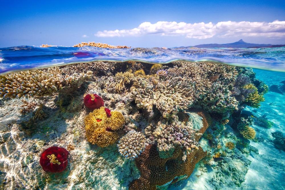Изображение выглядит как небо, вода, природа, риф  Автоматически созданное описание