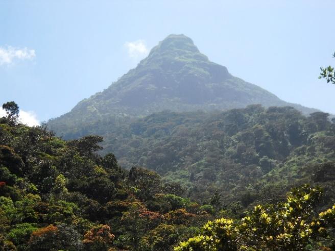 Kết quả hình ảnh cho adam's peak