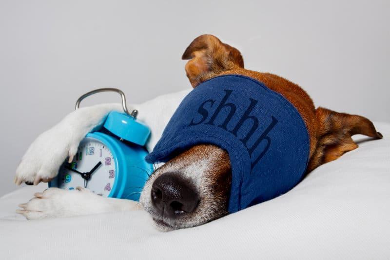6 Ideas On Sleeping Better and Waking Up Feeling Energized