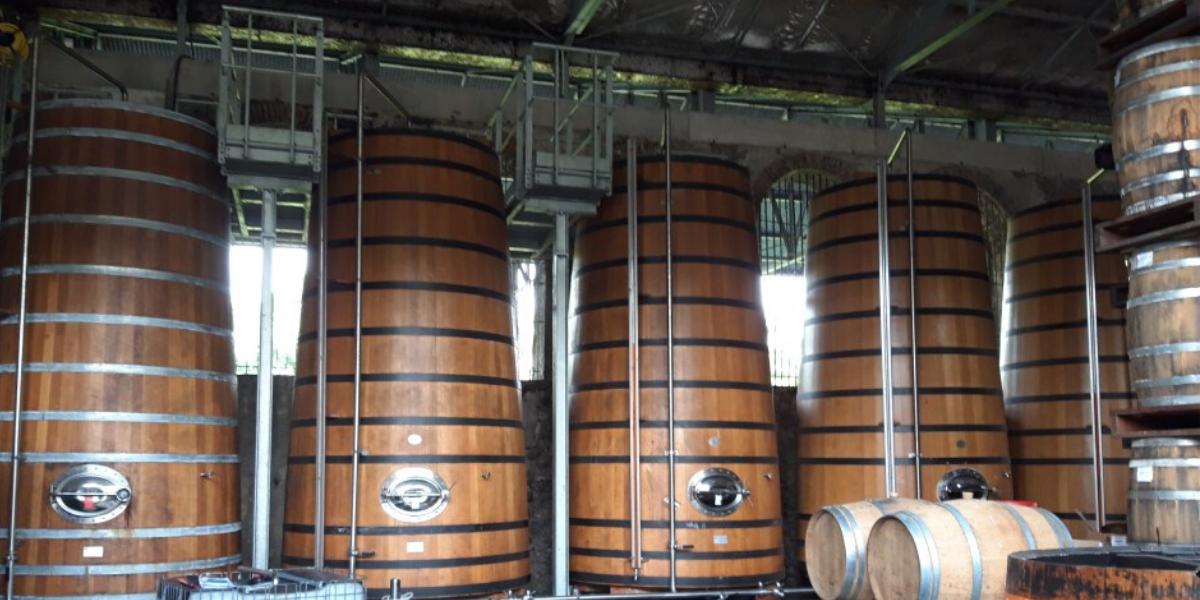 Distillerie de Martinique
