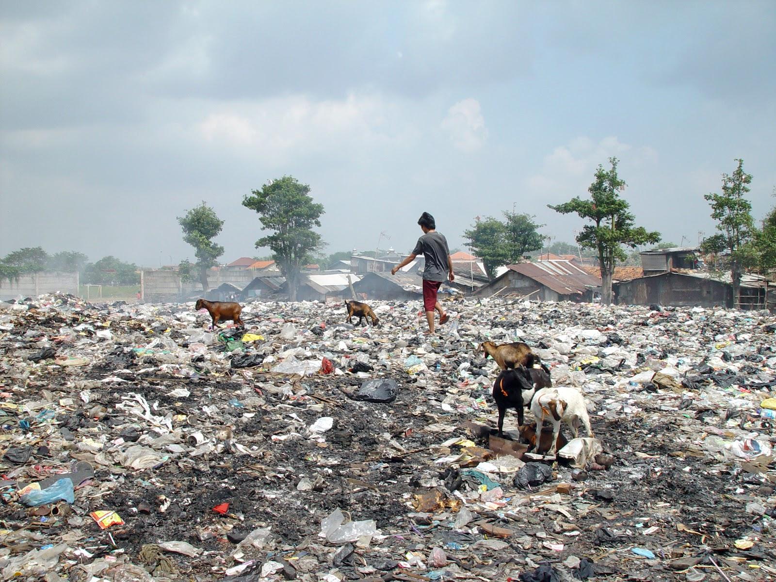 https://upload.wikimedia.org/wikipedia/commons/0/00/Jakarta_slumlife71.JPG