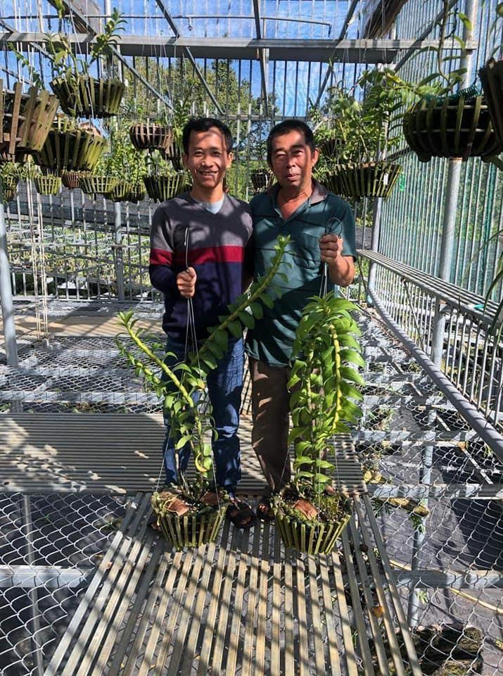 Anh Trần Quang Duy - Dành trọn trái tim cho cho hoa lan - Ảnh 2