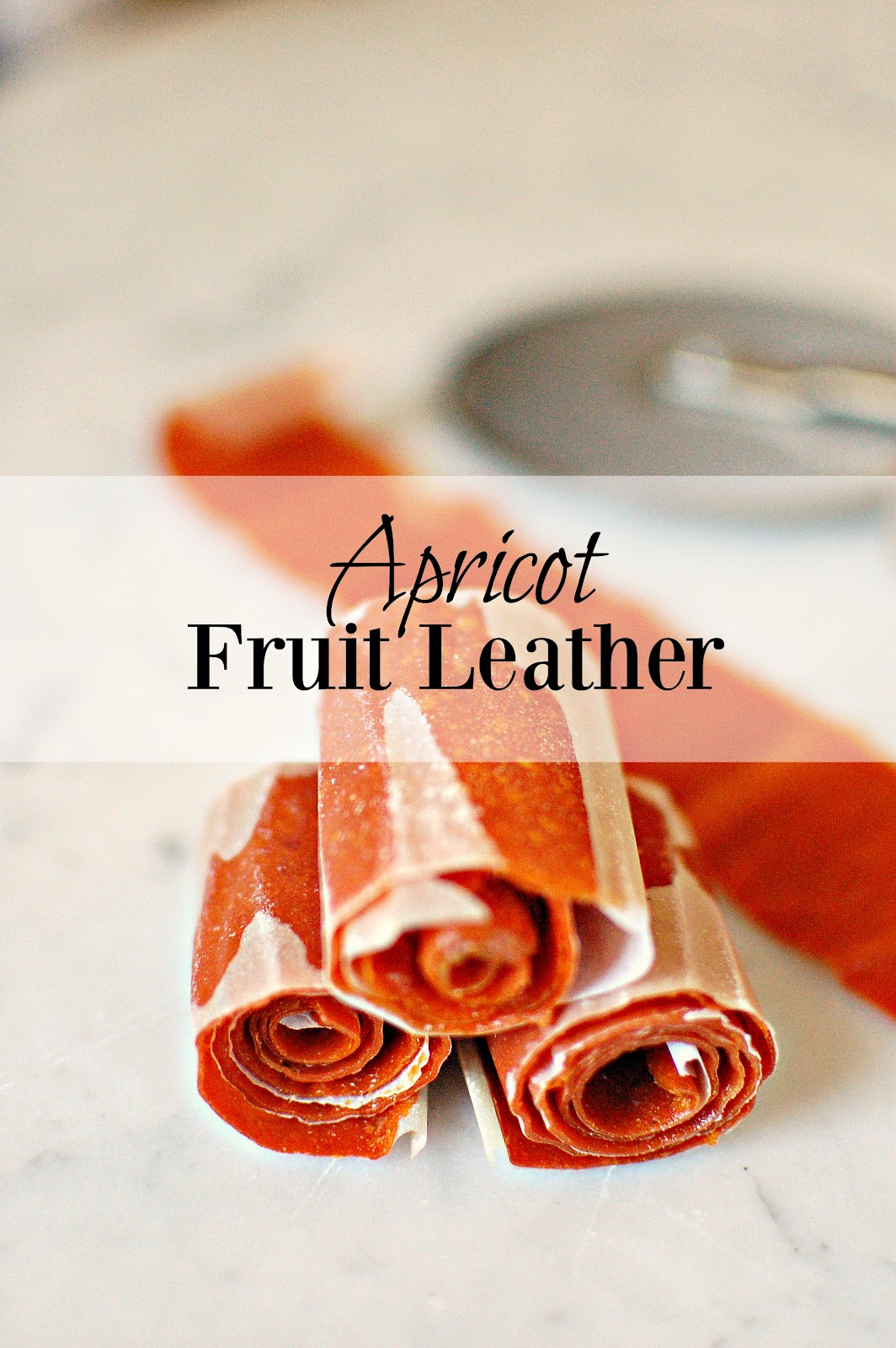Apricot Fruit Leather.jpg