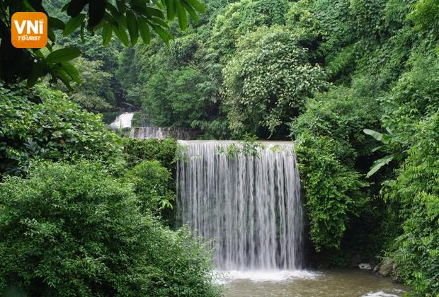 Ba Vi natural forest