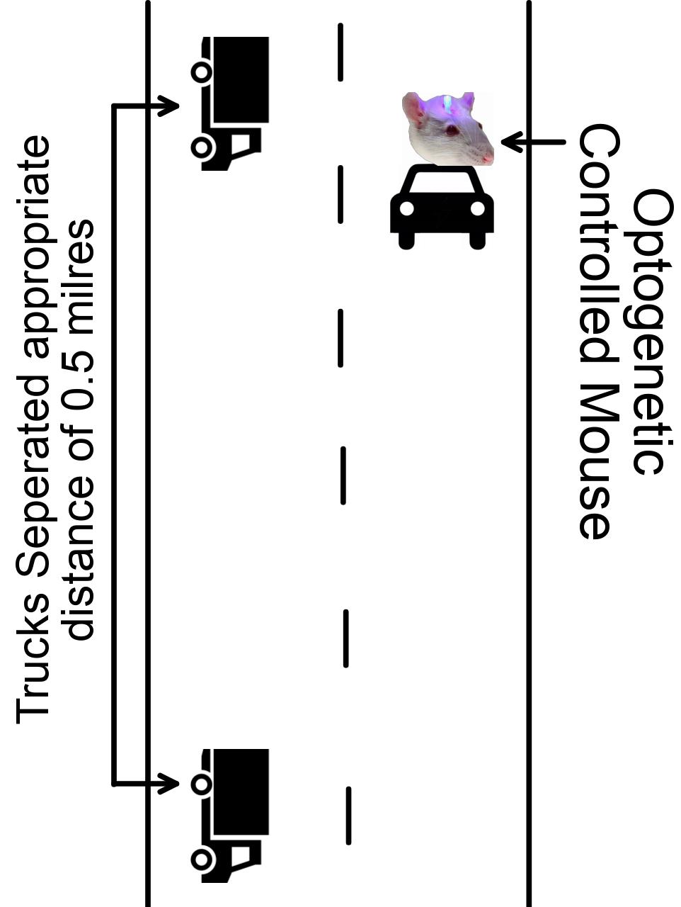 Figure 3: Kansas City to Denver Treadmill Setup