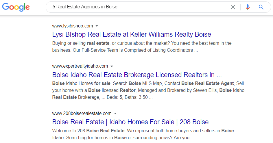 Google Search - 5 Real Estate Agents in Boise
