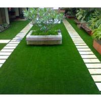 7 Best Artificial Grasses In India (Review & Buying Guide) [month] [year]