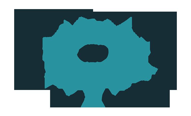Làm thế nào để chọn được một dịch vụ seo website chuyên nghiệp như ý muốn?