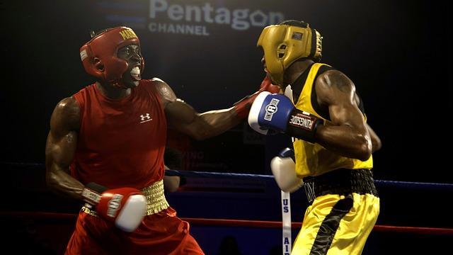 G:\IMAGENES\boxers-652388_640.jpg