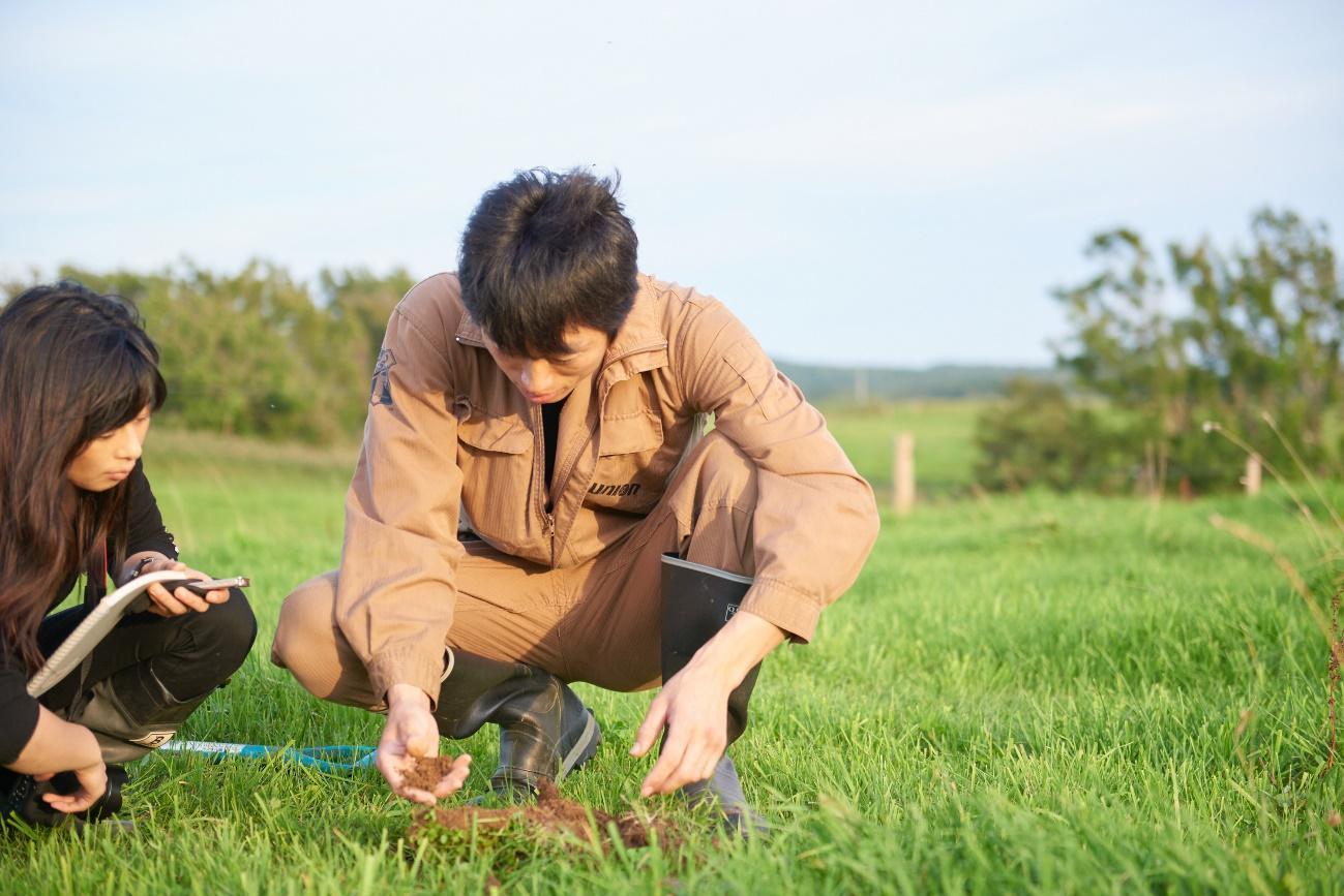 草, 屋外, 人, フィールド が含まれている画像  自動的に生成された説明