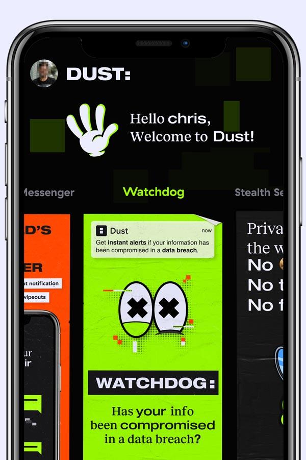 dust  interface