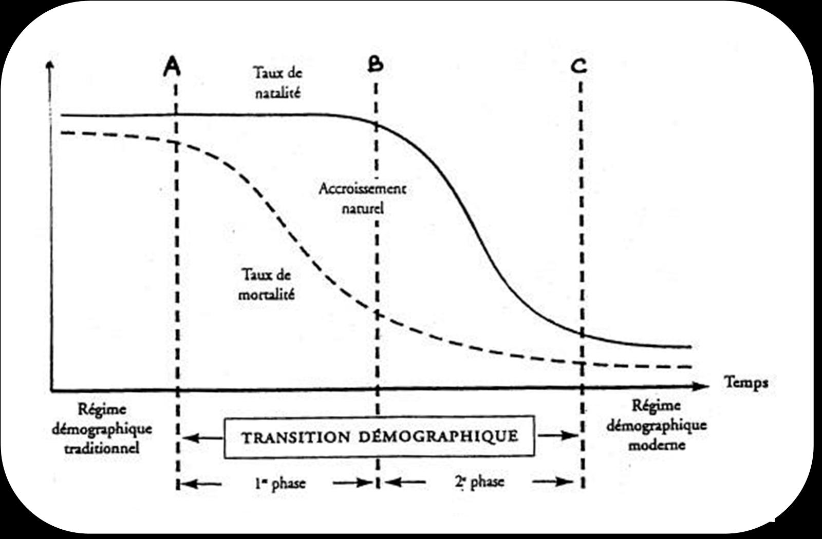 transition démographique.png