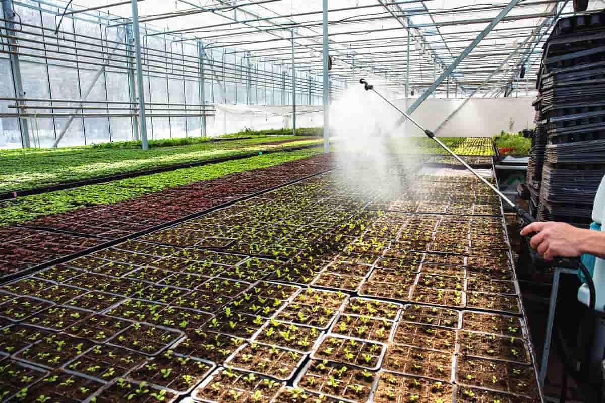 micro sprinkler irrigation
