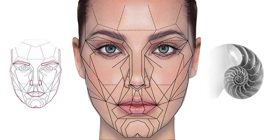 Skin-Deep-Website-Banne-Golden-Ratio-face-map.jpg