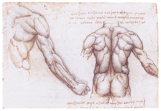 Ingenious inventions Leonardo Da Vinci 8