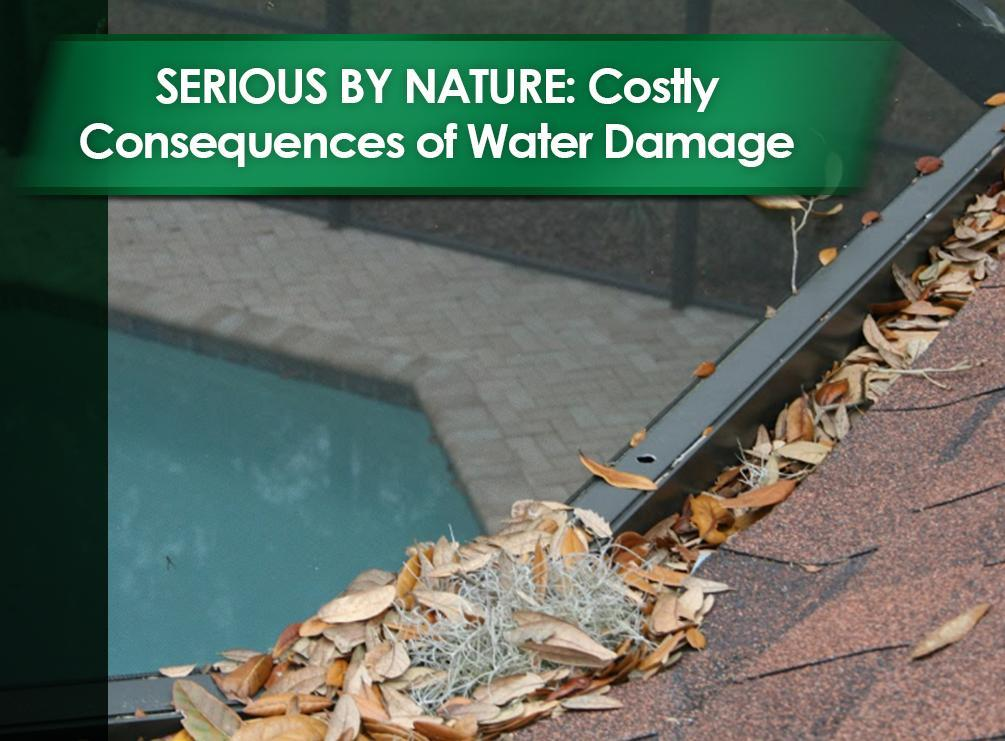 Serious By Nature Costly Consequences Of Water Damage