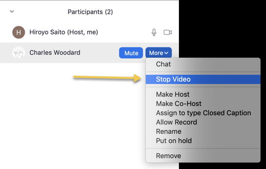 a screenshot showing participants window and more and stop video options highlighted.