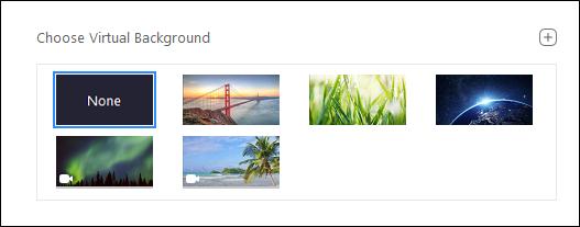 "The ""Choose a Virtual Background"" menu."