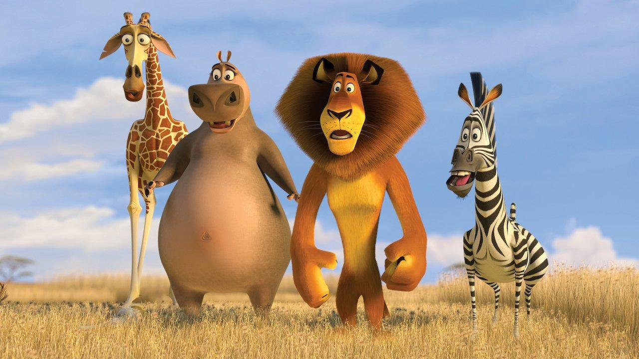 The zoo squad in Africa
