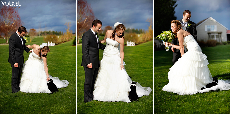 bride cat - Maradee Wahl: Bridal Stylist