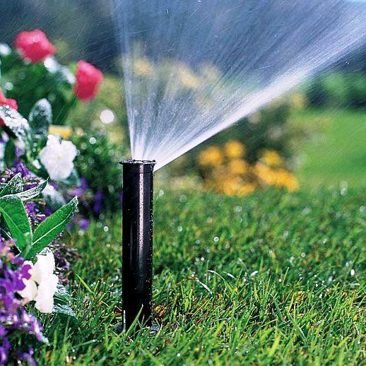 Как поливать сад в жару