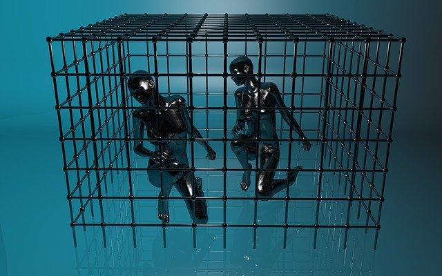 Imprisoned, Cage, Psychology, Grid, Captivity, Caught