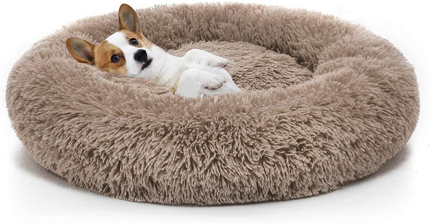 Image result for dog bed