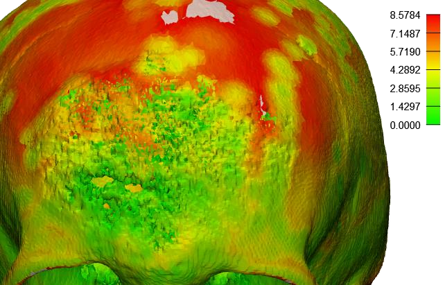 Imagen que contiene colorido, alimentos, verde, pájaro  Descripción generada automáticamente