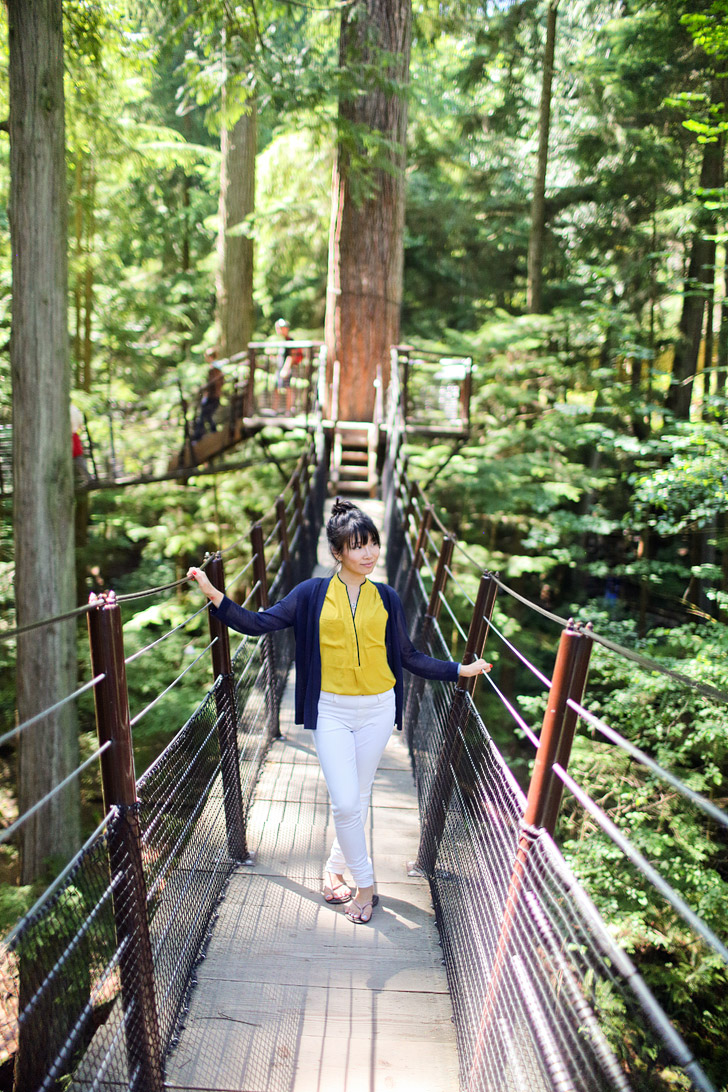Treetops Adventures (Things to See in Vancouver).