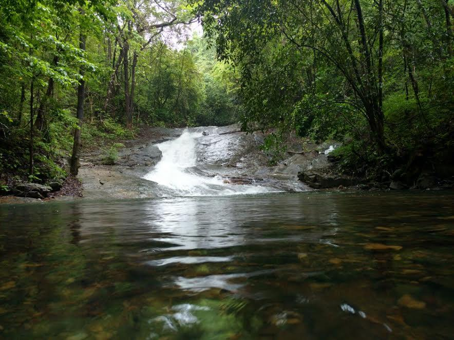 water flow in surla fall in the forest  while trekking