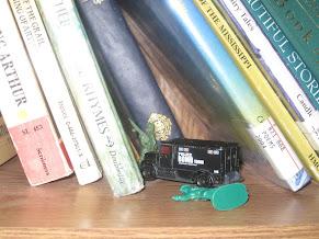 bookshelf scenes