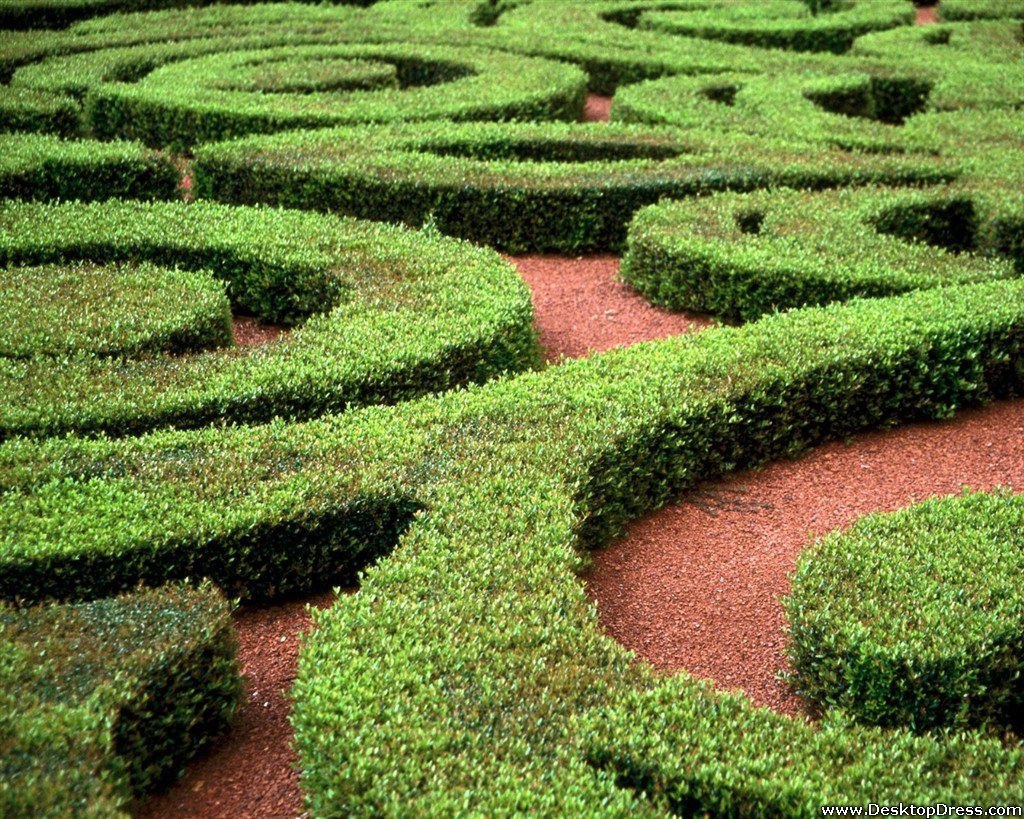 Garden of Mazes