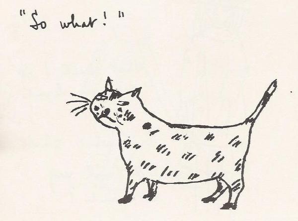 Stevie smith cat.jpg