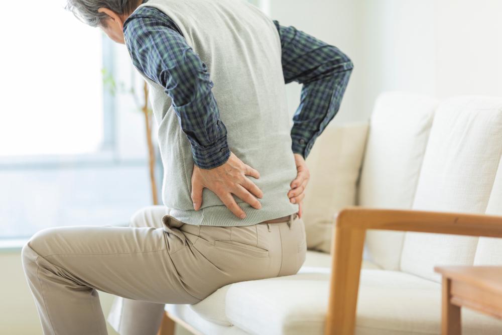 Com o tempo, as fibras musculares vão se degenerando e atrofiando devido à miastenia gravis. (Fonte: Shutterstock)