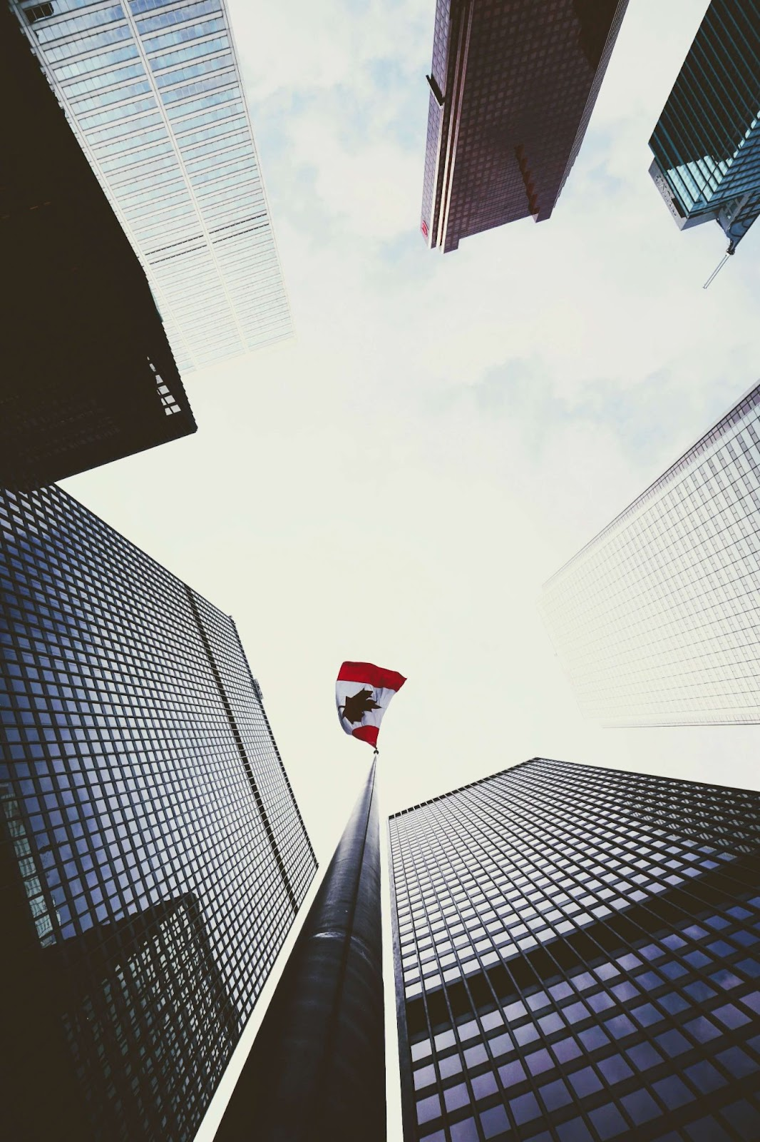 How to start a startup in Canada