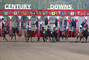 Century Downs racetrack