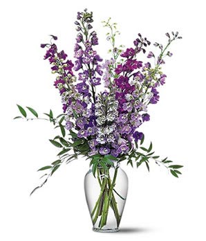 Image result for delphinium flowers vase
