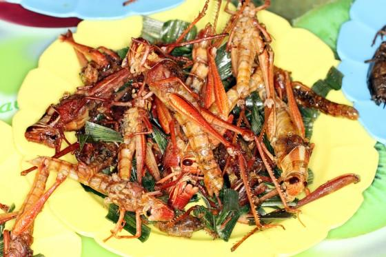 C:\Users\user\Desktop\AVRIL'S STUFF\Fried-Grasshoppers-560x373.jpg