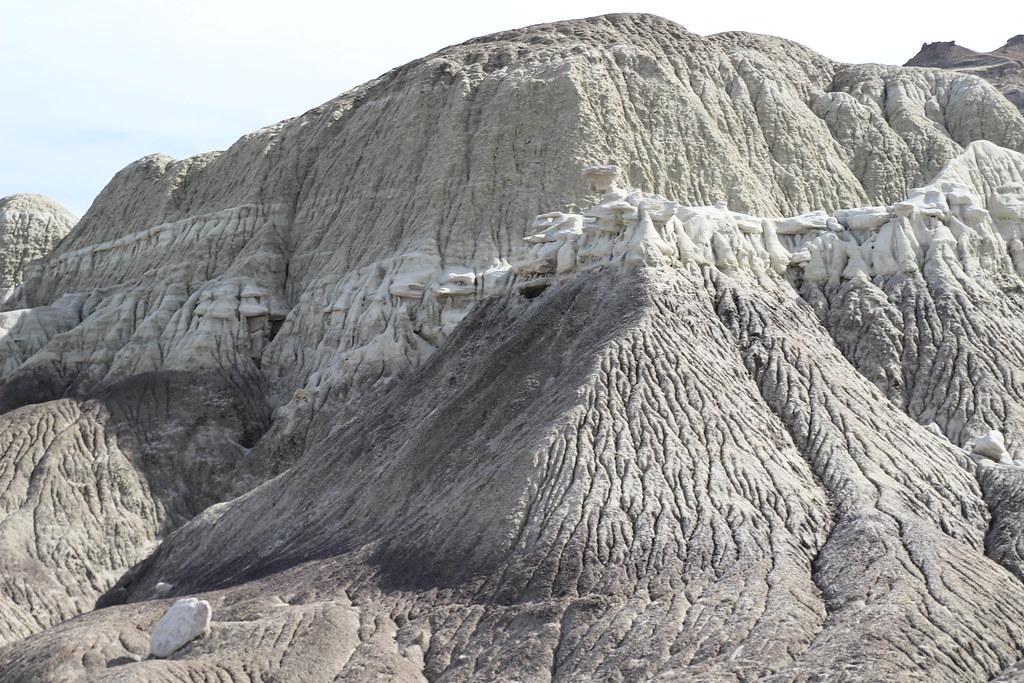 Der versteinerte Wald von La Leona, der versteinerte Wald von El Calafate