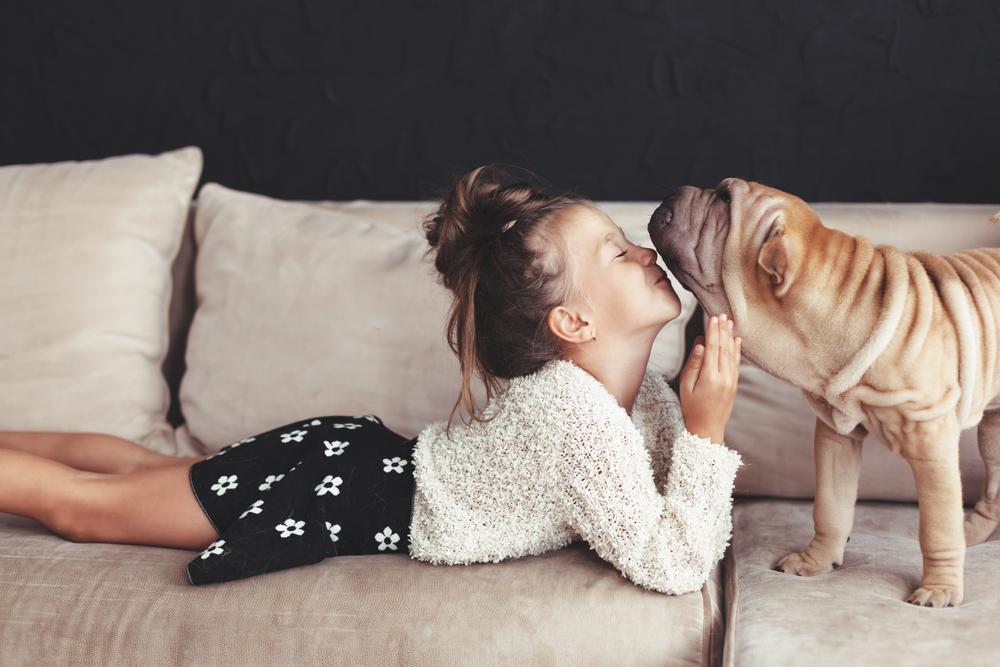 給狗狗愛的鼓勵
